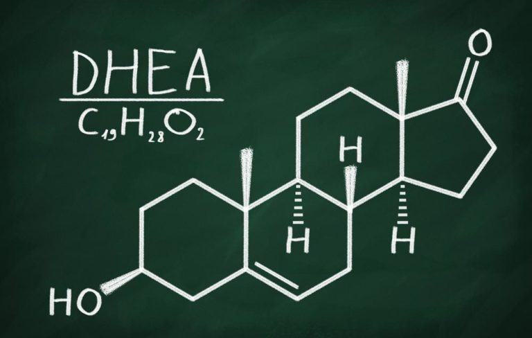 DHEA Basic Facts